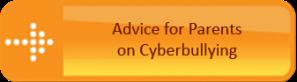 2_Cyberbullying